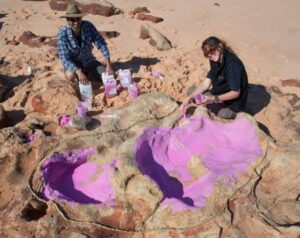 3D digital models of dinosaur tracks are relatively easy to handle, but the same can't always be said of the real thing