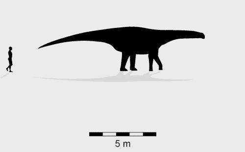 Sauropod Oobardjidama foulkesi trackmaker