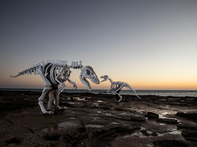 Dinosaur puppets on a Broome beach - photo credit Damian Kelly